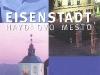 eisenstadt_haydnstadt_slo2
